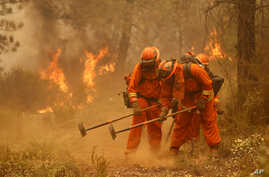A crew builds a containment line for a wildfire near Sheep Ranch, Calif., Sept. 12, 2015.