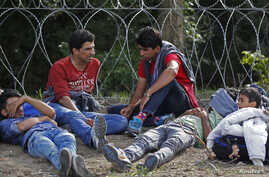 Detained migrants sit next to a barbed wire after crossing the border from Serbia near Ásotthalom, Hungary, Sept. 15, 2015.