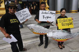 Villagers hold fish-shaped signs and placards while they pose for photographers at Thailand's Administrative Court in Bangkok, June 24, 2014.
