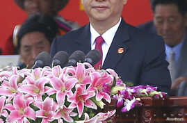 China's Vice-President Xi Jinping delivers a speech at the celebration ceremony of the 60th anniversary of Tibet's peaceful liberation in Lhasa, Tibet Autonomous Region July 19, 2011. Chinese Vice President Xi Jinping on Tuesday vowed to improve peop