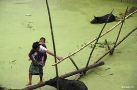 A villager carrying a child crosses a flooded area in the Jorhat district, in the Indian state of Assam, August 25, 2014, where the latest heavy rains have caused landslides and floods.