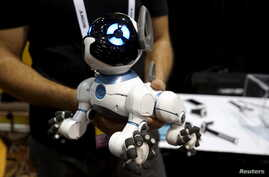 A robotic dog named CHiP by WowWee is described as being able to learn tricks from its owner.