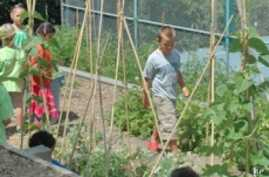 Students grow their own health snacks in the school's garden.