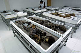 FILE - A display of Chinchorro mummies at the San Miguel Museum in Aricay, Chile, in 2005.