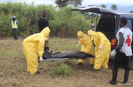 FILE - Health workers carry the body of an Ebola virus victim in the Waterloo district of Freetown, Oct. 21, 2014.