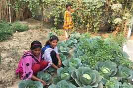 FILE - Young girls pose as they tend to vegetables they are growing as part of the Girls' Project that teaches land literacy and helps prevent trafficking and early marriage in Charmahatpur village in West Bengal state, India, Feb. 13, 2017.