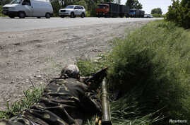 A pro-Russian rebel takes his position at a front line rebel position near the eastern Ukrainian town of  Slovyansk May 16, 2014.