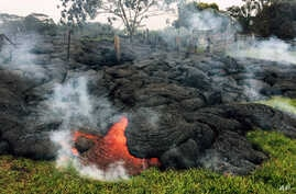 This Oct. 26, 2014 photo provided by the U.S. Geological Survey shows the lava flow front of from an eruption that began the June 27, as the front remains active and continues to advance towards the northeast threatening the town of Pahoa on the Big