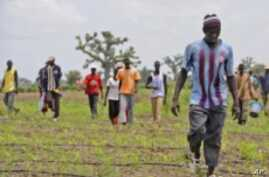 Agricultural Conference Aims to Increase Food Production in Africa