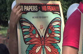 Undocumented aliens of the 'No Papers, No Fear' movement