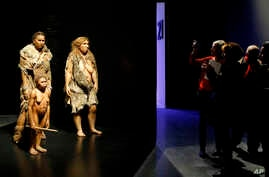 "FILE - Visitors take pictures of models representing Flores, human and Neanderthal women in the ""Musee des Confluences,"" a new science and anthropology museum in Lyon, central France, Dec. 18, 2014. Neanderthals had a long run in Europe, but disappea"