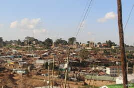 According to the National Tuberculosis, Leprosy and Lung Disease Program in Kenya, the major factor responsible for the large TB disease burden in Kenya is the concurrent HIV epidemic. Contributing factors include poverty and social deprivation leadi