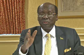 South Sudan Foreign Minister Barnaba Marial Benjamin makes a point to reporters at a news conference in Washington, D.C. on Dec. 4, 2014.