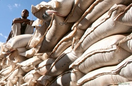 FILE - An unidentified government official sits on sacks of wheat donated by the U.S. at a food distribution point near Jijiga, eastern Ethiopia,  Dec. 1, 2009.