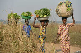 FILE - Women come back from the fields to sell vegetables at a market near the internally displacement camp close to the airport in Bangui.