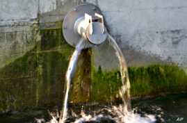 Storm water runoff picks up all kinds of pollutants such as petroleum,  solvents and animal waste.