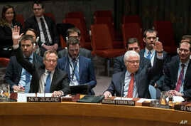 New Zealand's U.N. Ambassador Gerard van Bohemen, left, and Russia's ambassador to the U.N., Vitaly Churkin, raise their hands as they join other members of the Security Council at the United Nations headquarters in passing a resolution supporting ef