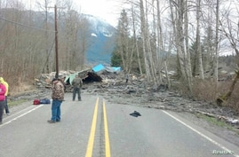 Officials survey a large mudslide in this handout photo provided by the Washington State Police near Oso, Washington, March 22, 2014.