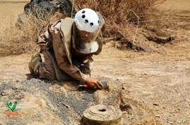 In this undated photograph released Aug. 19, 2018 by the state-run Emirates News Agency (WAM) on behalf of the Saudi-funded Masam anti-mine operation, an unidentified de-miner uncovers a mine near Marib, Yemen.