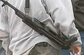 US Gun Control Advocates Disappointed by Lawmakers vote