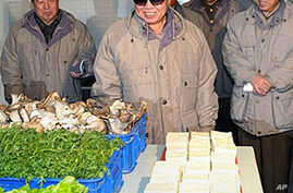 UN: Millions of North Koreans Continue to Face Food Shortages