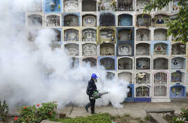 FILE - A specialist fumigates the Nueva Esperanza graveyard in the outskirts of Lima, Jan. 15, 2016. The Zika virus has quickly spread across South America and the Caribbean in recent weeks.