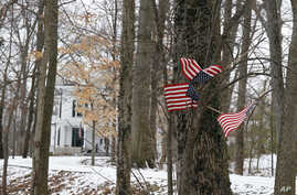 """Small American flags have been placed in the trees in front of the Warmbier family home, Friday, Jan. 22, 2016, in Wyoming, Ohio. North Korea on Friday announced the arrest of Otto Warmbier, a university student from Ohio, for what it called a """"hosti"""