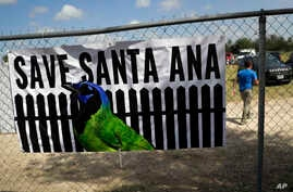 A man walks past a sign in support of Santa Ana National Wildlife Refuge, home to 400-plus species of birds and several endangered wildcats, at a rally in Mission, Texas, Aug. 12, 2017.