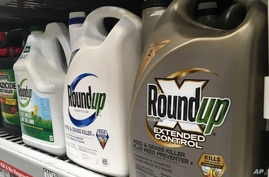 FILE - Containers of Roundup are displayed on a store shelf in San Francisco, Feb. 24, 2019.