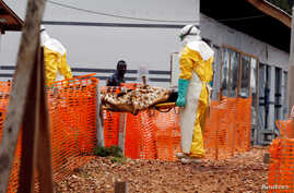 FILE - Health workers carry a newly admitted confirmed Ebola patient into a treatment centre in Butembo in the eastern Democratic Republic of Congo.