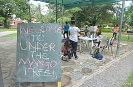 At Under the Mango Tree camp in Ghana's capital Accra, children learn about all aspect of ethical agriculture.
