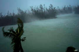 Strong winds from Hurricane Dorian blow the tops of trees and brush while whisking up water from the surface of a canal that leads to the sea, in Freeport, Grand Bahama, Bahamas, Sept. 2, 2019.