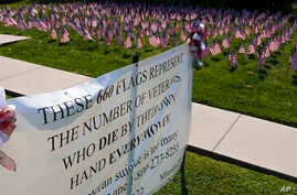 FILE - Some of the 660 American flags on display, illustrating the number of U.S. veterans who commit suicide each year, are seen by the banner on the church lawn of St. Peter's Reformed Church, in Zelienople, Pa., Aug. 30, 2019.