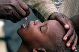 FILE - A Congolese child is given a polio vaccination at a relief camp near Gisenyi, Rwanda, Jan. 25 , 2002. The WHO says Zambia has reported its first local case of polio since 1995 in a 2-year-old boy paralysed by a virus derived from the vaccine.