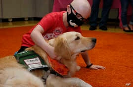 Children's Hospital patient Draegan Crabb, age nine, of Dale, Okla., pets a therapy dog following an announcement that The…