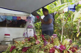 In this image from video, a woman prays in front of a portrait of her lost child with measles in Apia, Samoa.