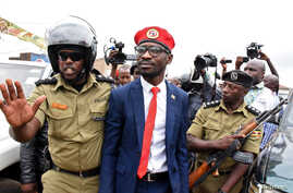 Ugandan musician turned politician, Robert Kyagulanyi also known as Bobi Wine is detained by policemen in Kasangati town,…