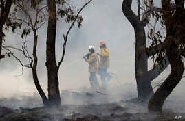 Firefighters control a spot fire near Bredbo, south of the Australian capital, Canberra, Sunday, Feb. 2, 2020. The threat is…