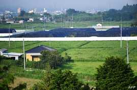 File -- Picture shows radiated surface soil covered by black tarps, at a decontaminated field in Futaba, Fukushima prefecture, A