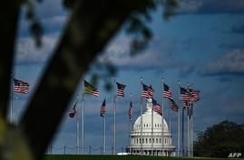 The dome of the US Capitol building is seen behind a row of US flags on April 10, 2020 in Washington, DC. - The global…