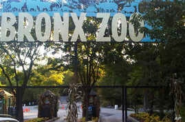 FILE - An entrance to the Bronx Zoo in New York. A tiger at the zoo has tested positive for the new coronavirus.