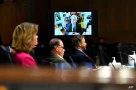 Senators listen as Dr. Anthony Fauci, director of the National Institute of Allergy and Infectious Diseases, speaks remotely…