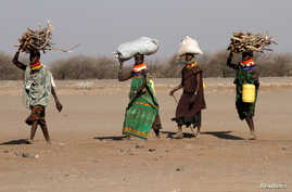FILE - Women carry firewood on their heads outside the Kakuma refugee camp in Turkana county, northwest of Nairobi, Kenya, Feb. 1, 2018.