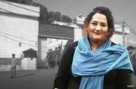 Undated image of Iranian rights activist Atena Daemi, who has been serving a seven-year term at Tehran's Evin prison since 2016.