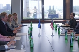U.S. Special Representative for Iran Brian Hook and his delegation, seated right, meet Estonian officials at the Estonian foreign ministry in Tallinn, July 28, 2020. (Estonian Foreign Ministry)