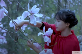 Li Ziqi, shown here in one of her YouTube videos, is one of China's most popular vloggers. (Image via YouTube)