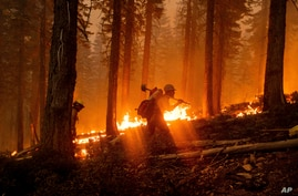 Firefighters battle the North Complex Fire in Plumas National Forest, California, Sept. 14, 2020.