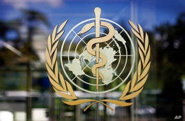 FILE - In this Thursday, June 11, 2009 file photo, the logo of the World Health Organization is seen at the WHO headquarters in…
