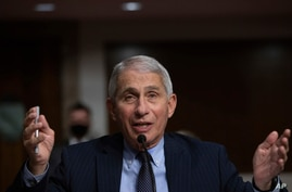 Dr. Anthony Fauci, Director of the National Institute of Allergy and Infectious Diseases at the National Institutes of Health,…