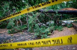 A downed tree blocks a street Thursday, Oct. 29, 2020, in Decatur, Ga., a suburb of Atlanta, after the passage of Hurricane…